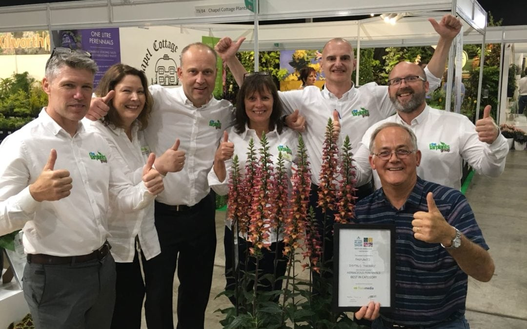 Farplants scoop five awards at the HTA National Plant Show